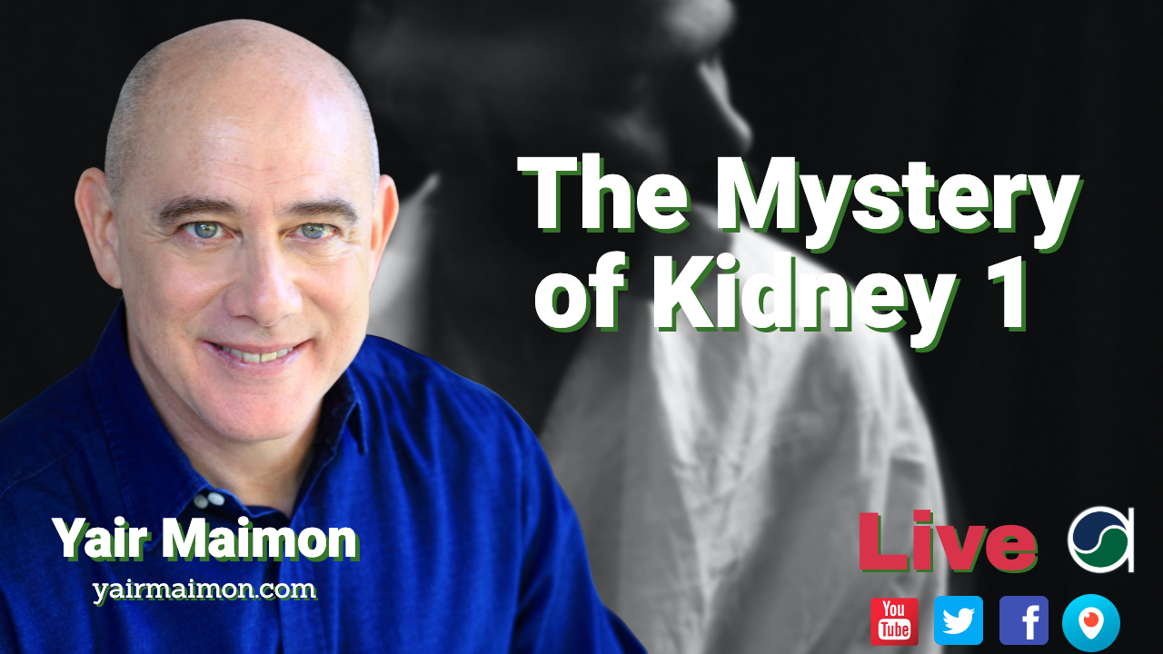Mystery of Kidney 1